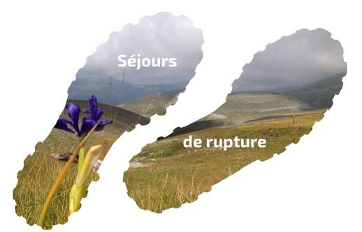 Rupture2