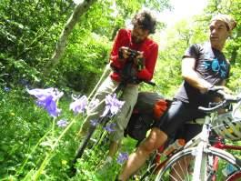 Le vélo... et les plantes