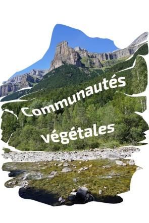 Communautés_v